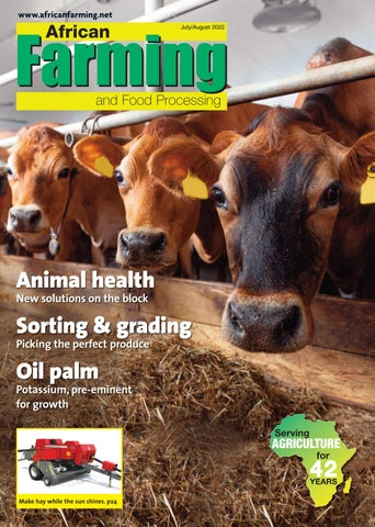 African Farming and Food Processing