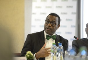 Adesina emphasises role of agriculture to attain global food security