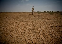 Poor rainfall worsens hunger in east Africa: FAO