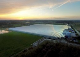 Rolls-Royce to deliver new gas engines for tomato greenhouses