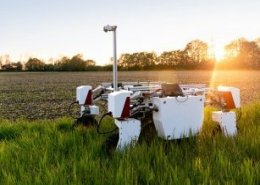 AI brings transformative change in agricultural productivity