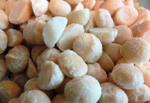 Macadamia nut processing facility in progress in South Africa