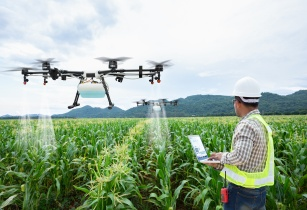 QSIT implements AI solution for Egyptian agriculture sector