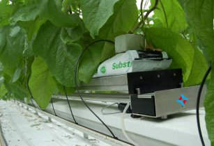 Aquabalance cucumber greenhouse Hoogendoorn Growth Management