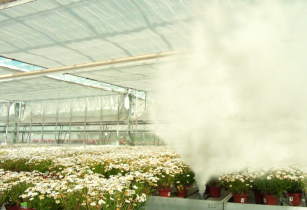 Biofume Greenhouse Smoke Generator in action