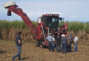 Case IH Austoft Sugarcane Harvester Introduced to Congress Attendees