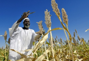 Farmer agriculture Africa Renewal