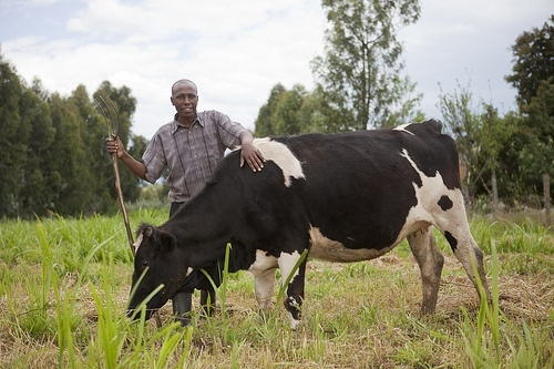 Kenyan farmer Gates Foundation