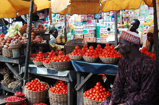 New pesticide to fight Nigerian tomato crisis