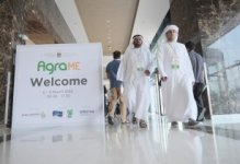 Egypt pledges subsidies to help agricultural export to the MEA region