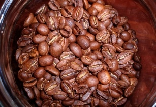 coffee project Kenya