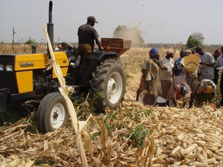 Inappropriate_aid_and_development_holds_back_African_Agriculture.e