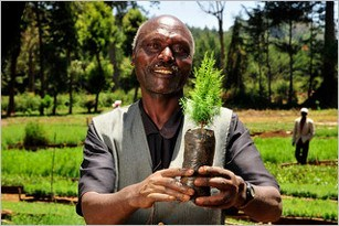 African_agriculture_CIAT