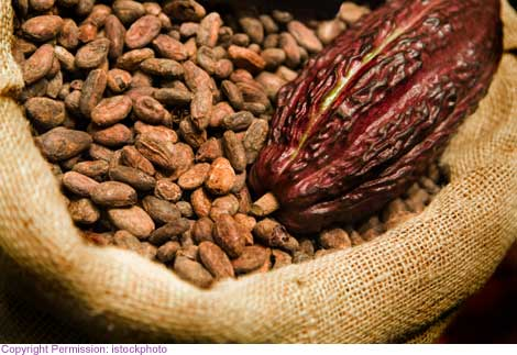 Enjoyed by sweet-toothed consumers the world-over, more than half of the world's chocolate comes from the cocoa plantations of Ghana and Côte d'Ivoire
