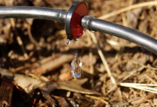 AB Sugar calls for global ideas to tackle water loss in irrigation