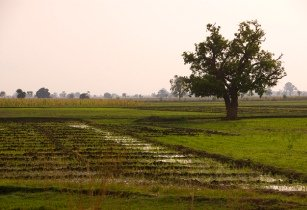 New financing opportunities for Zambia�s water and agriculture sectors