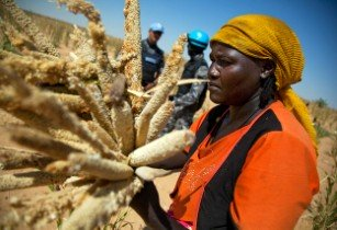 Exploring ways to ensure world food security