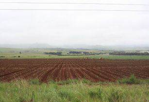 South Africa Farm PZFUN Wikimedia Commons