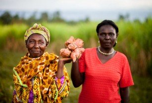 AgriBriefing launches industry wide survey on women in food and agriculture