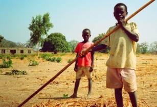 Improving smallholder farmers in select areas in Uganda